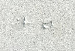 詐欺,外壁塗装